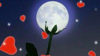 Спокойной ночи! Любовь моя! Сладких снов!