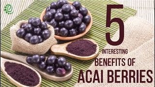 5 Interesting Benefits Of Acai Berries | Organic Facts