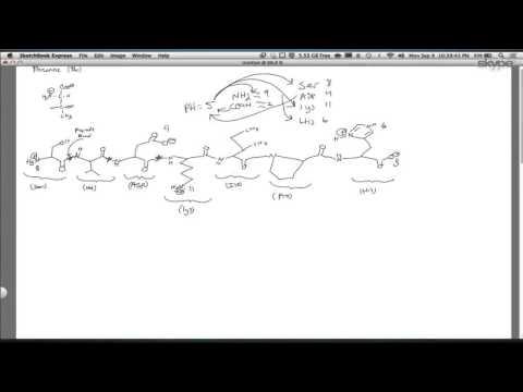 Biochemistry: Protein structure (1)