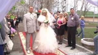 Выездная регистрация в Константиново