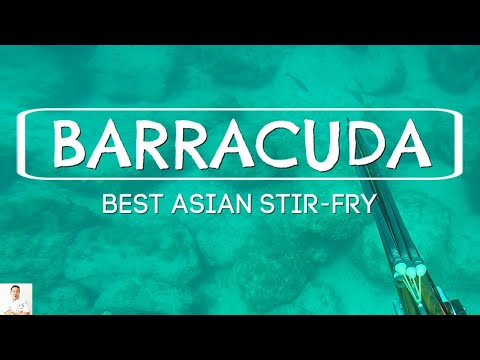 Most Delicious Barracuda Dish | Asian Inspired Stir Fry