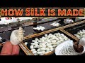 How Silk is Made | Making of Silk thread from silkworm cocoons