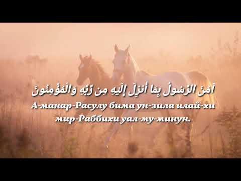 Аяты 285-286, Сура Аль-Бакара, чтец Басир Дураку.
