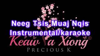 Neeg Tsis Muaj Nqis || Karaoke/Instrumental || Laib Laus