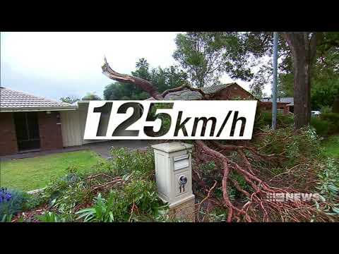 Weather Warning | 9 News Perth