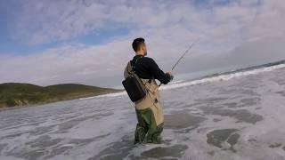 Spinning desde  playa con Jig IMÁN  de 40 gramos