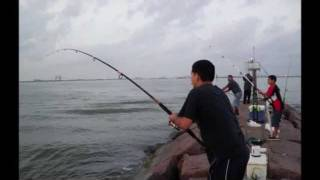 Red Drum Fishing - Galveston, TX