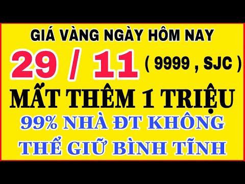 Giá vàng hôm nay 9999 ngày 29/11 | NGUY CƠ VỀ MỨC BAN ĐẦU || Bảng Giá Vàng SJC 9999 24K 18K 14K 10K