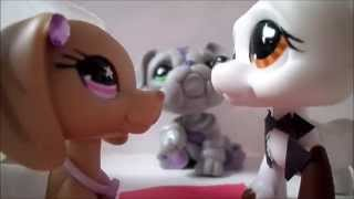 LPS: Rude: Music Video (Magic) Littlest Pet Shop