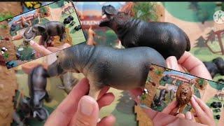 ZOO | AFRICAN | ASIAN | TIGER  ELEPHANT LION PANDA GIRAFFE GORILLA & MORE FACTS WILD ANIMALS