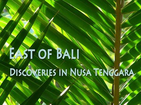 Adventures in Indonesia - East of Bali