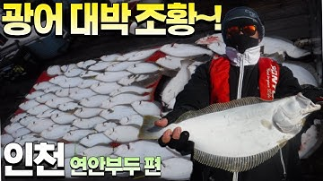 [피싱28호]인천 연안부두 광어 대박 조황~!!  외수질낚시&광어다운샷 ,완죤~ 대박~