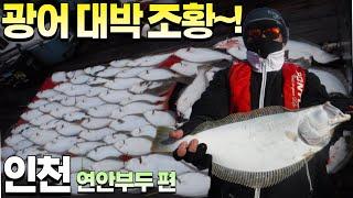 [피싱28호]인천 연안부두 광어 대박 조항~!!  외수…