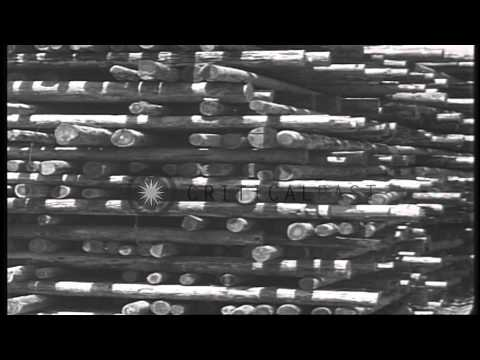 Navy yard equipment stacked at the Pearl Harbor in Hawaii. HD Stock Footage
