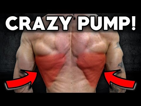 Download Youtube: Insane Back & Bicep Workout (Crazy Pump!)
