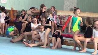 Чемпионат школы олимпийского резерва по спортивной гимнастике