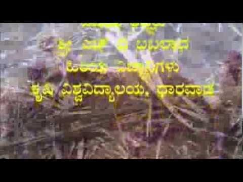 Method of composting sugarcane residue Kannada BAIF Karnataka