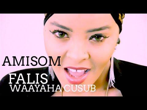 AMISOM WAAYAHA CUSUB 2016