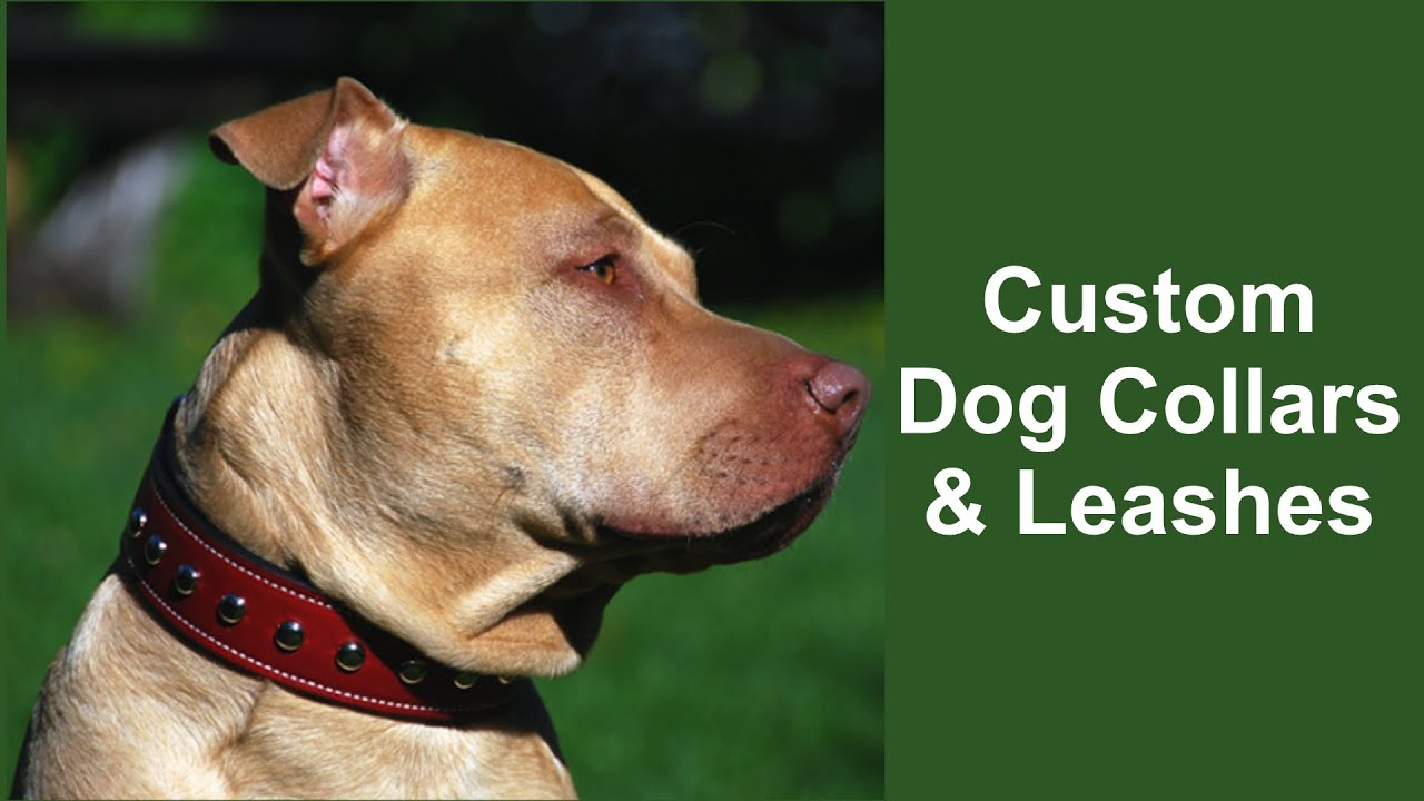 Custom Leather Dog Collars Leashes
