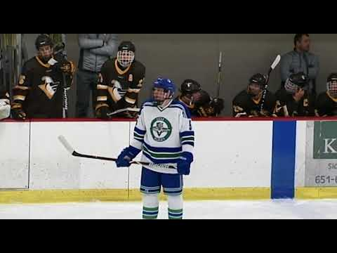 Eagan High School Boys Varsity Hockey vs. Apple Valley (1-16-2018)