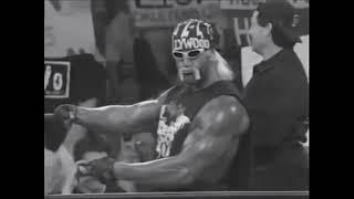 nWo Theme - Hollywood Hogan Voodoo Child