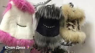 LC484:Женский клуб. В мире животных. Мода для собак. Чистка зубов собаке.