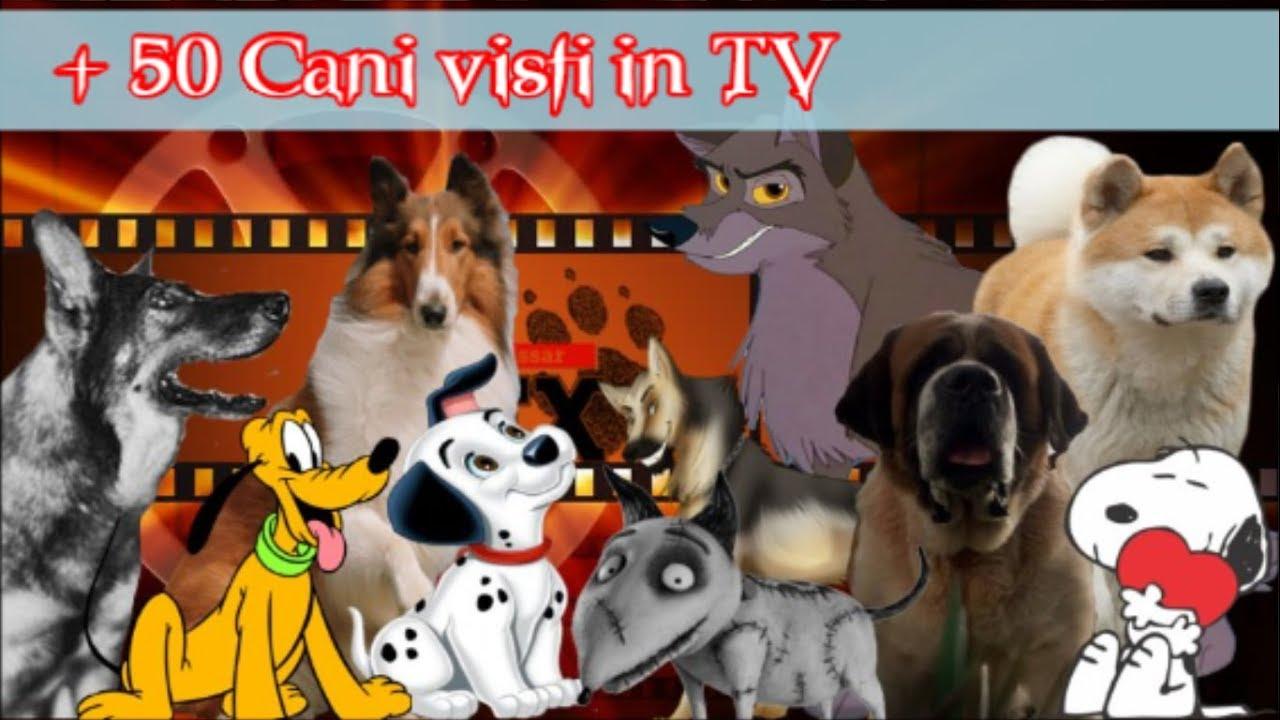 + 50 Cani nei Film, Cartoni Animati, nelle Serie TV (1932 - 2018)