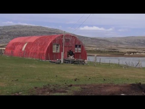 Life in the Falklands