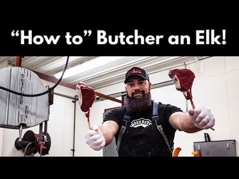 How To Butcher An Elk | Complete Breakdown Of All Of The Elk Meat | By The Bearded Butchers