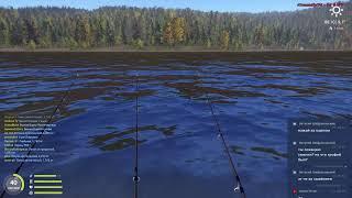 Русская Рыбалка 4 Тунгуска ищем стерлядь и сома амурского