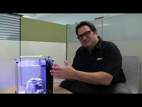 Understanding Water Levels In Integrated Aquarium Filters