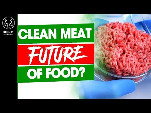 The Facts About Clean Meat  - Lab-Grown Meat: The Future Of Food