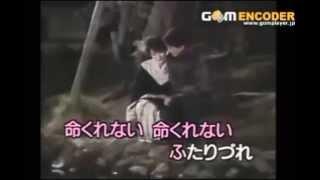 76. 命くれない 瀬川瑛子 cover by saizo オリコン 1987年 1位 これが演...