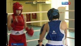 В Сальске в рамках Чемпионата ЮФО боксеры разыграют 61 комплект медалей