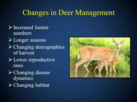 White-tailed Deer Management in Missouri (2014)