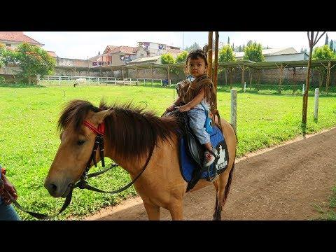 Hana Berani Naik Kuda Poni ❤ Horse Riding ❤ Riding a Pony