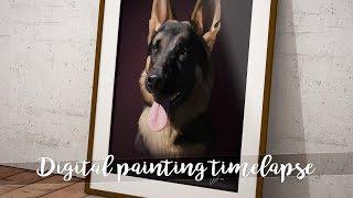 German Shepherd - Digital Painting Time Lapse