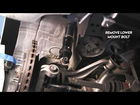 BC Racing NA- Separate Spring and Shock Preload
