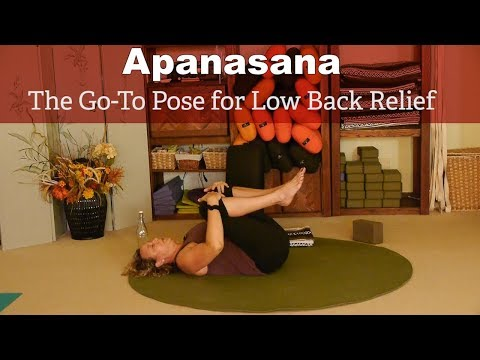Go-To Yoga Pose for Low Back Relief with Justine Shelton, Viniyoga Therapist