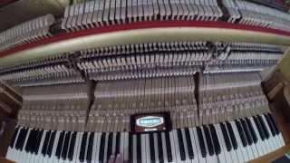 налаштування піаніно в домашніх умовах