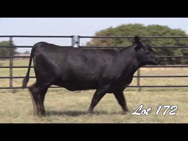 Pollard Farms Lot 172