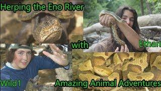 Herping the Eno River! (Ft. Amazing Animal Adventures) 2WildBoystv -EP 15