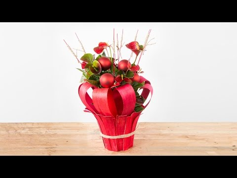 Anthurium Plants for Christmas | Flower Factor How To | Plant Creation