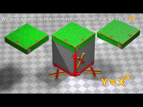 Polynomial derivatives:  3D visualization