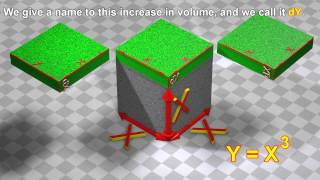 Polynomial derivatives:  3D visualization