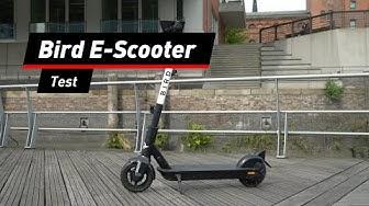 Bird E-Scooter im Test: Das taugt der Leih-Roller | deutsch