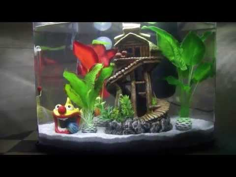 Betta fish got a new toy youtube for Betta fish toys