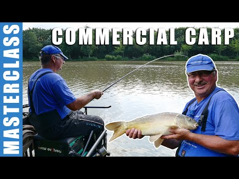 Commercial Carp Masterclass - Close In Pole Fishing