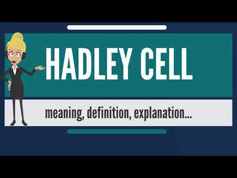 What is HADLEY CELL? What does HADLEY CELL mean? HADLEY CELL meaning, definition & explanation
