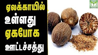 Nutmeg Health Benefits - Tamil Health & Beauty Tips